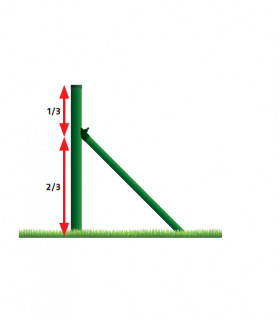 Pletivo poplastované zelená 55x55/1250mm ROLE 15m